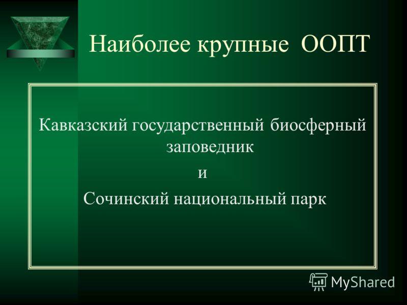 Наиболее крупные ООПТ Кавказский государственный биосферный заповедник и Сочинский национальный парк