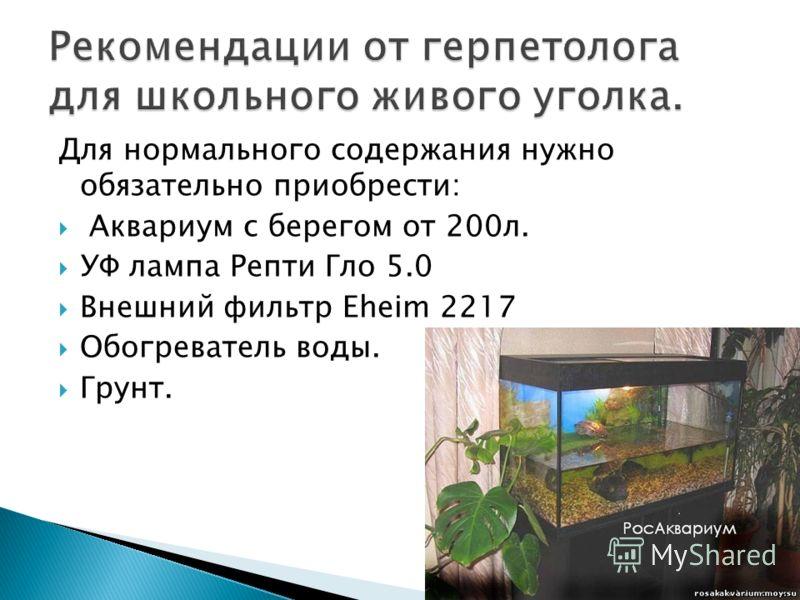 Для нормального содержания нужно обязательно приобрести: Аквариум с берегом от 200л. УФ лампа Репти Гло 5.0 Внешний фильтр Eheim 2217 Обогреватель воды. Грунт.