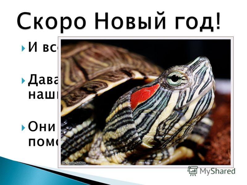 И все получают подарки. Давайте подарим новый дом нашим черепахам. Они нуждаются в вашей помощи.