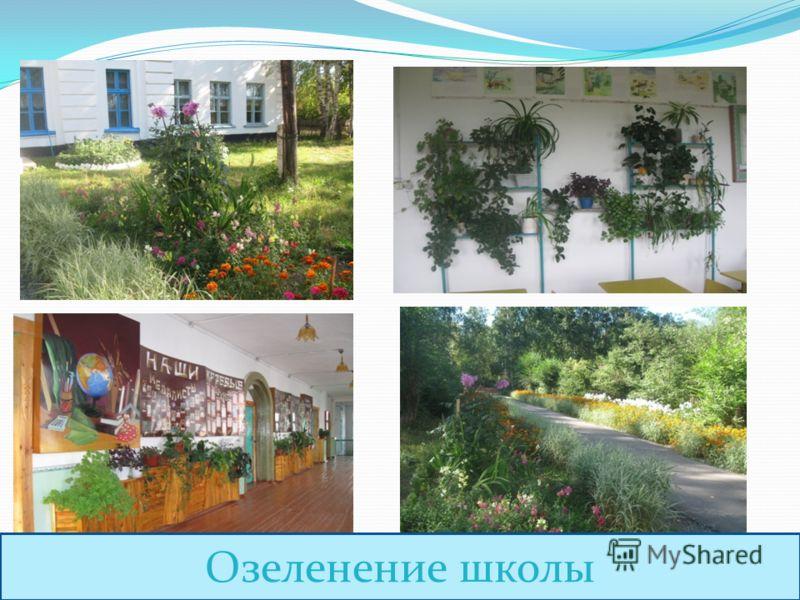 Озеленение школы