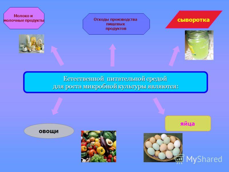 Естественной питательной средой для роста микробной культуры являются: Молоко и молочные продукты сыворотка Отходы производства пищевых продуктов овощи яйца