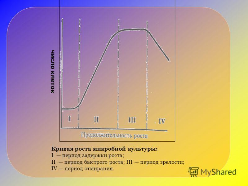 Кривая роста микробной культуры: I период задержки роста; II период быстрого роста; III период зрелости; IV период отмирания. число клеток