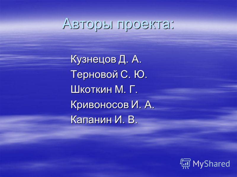 Авторы проекта: Кузнецов Д. А. Терновой С. Ю. Шкоткин М. Г. Кривоносов И. А. Капанин И. В.