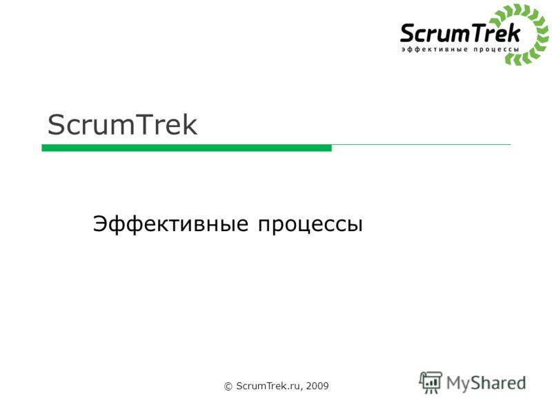 ScrumTrek © ScrumTrek.ru, 2009 Эффективные процессы