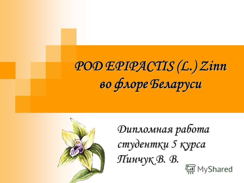 РОД EPIPACTIS (L.) Zinn во флоре Беларуси Дипломная работа студентки 5 курса Пинчук В. В.