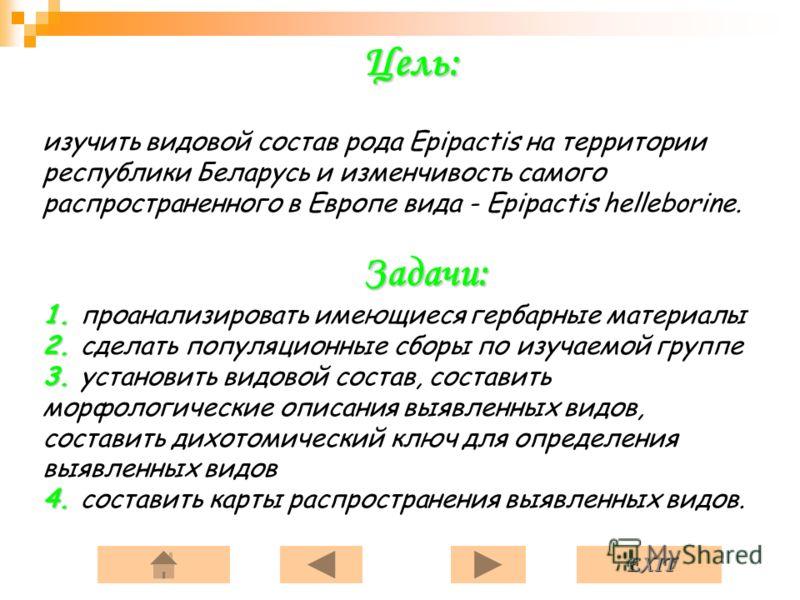 EXIT Цель: Задачи: 1. 2. 3. 4. Цель: изучить видовой состав рода Epipactis на территории республики Беларусь и изменчивость самого распространенного в Европе вида - Epipactis helleborine. Задачи: 1. проанализировать имеющиеся гербарные материалы 2. с