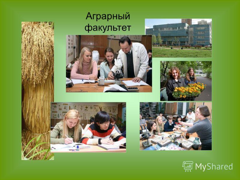 Аграрный факультет