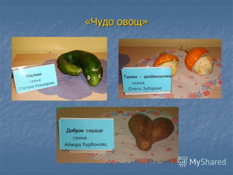 «Чудо овощ»