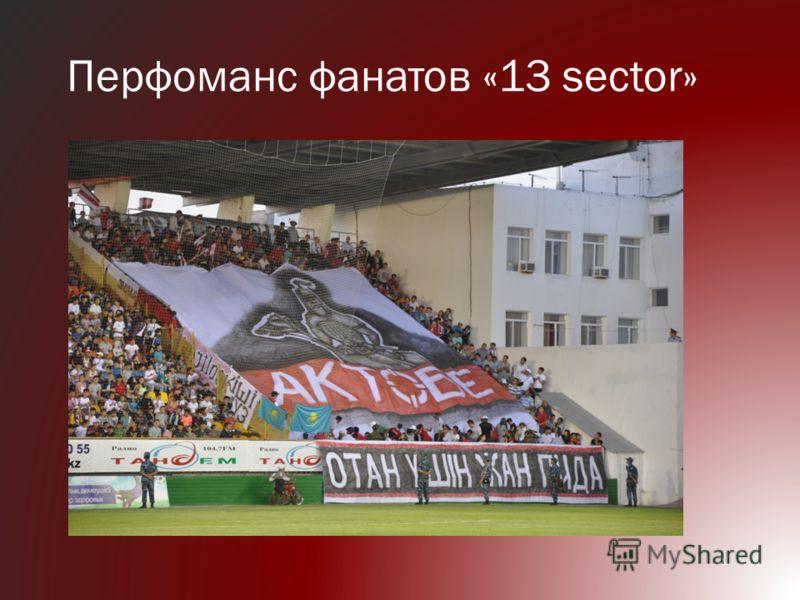 Перфоманс фанатов «13 sector»