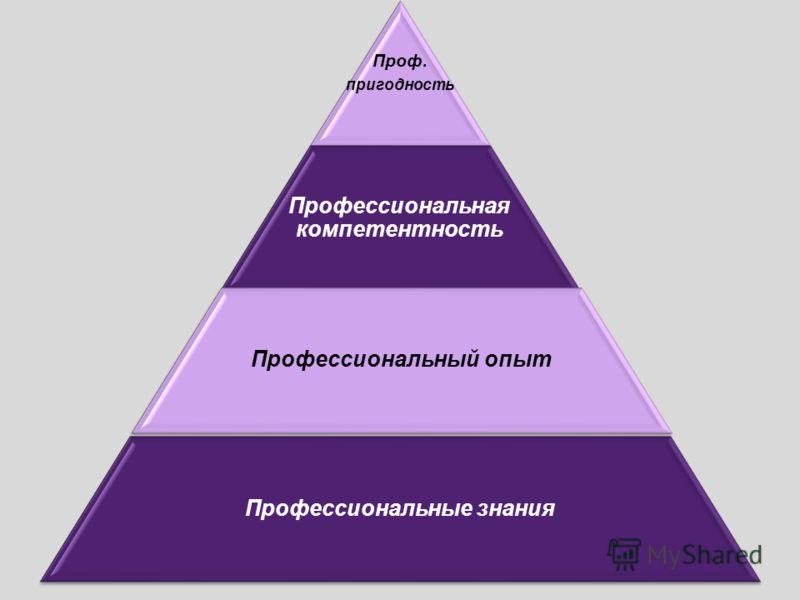 Проф. пригодность Профессиональная компетентность Профессиональный опыт Профессиональные знания