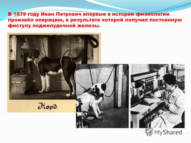 В 1879 году Иван Петрович впервые в истории физиологии произвёл операцию, в результате которой получил постоянную фистулу поджелудочной железы.