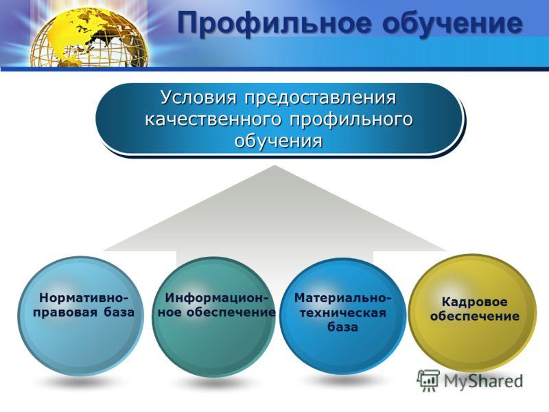 Условия предоставления качественного профильного обучения Кадровое обеспечение Материально- техническая база Информацион- ное обеспечение Нормативно- правовая база Профильное обучение