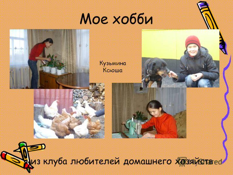 Мое хобби я из клуба любителей домашнего хозяйств Кузьмина Ксюша