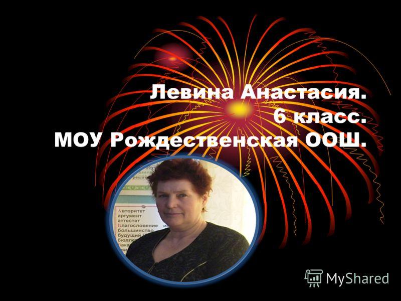 Левина Анастасия. 6 класс. МОУ Рождественская ООШ.