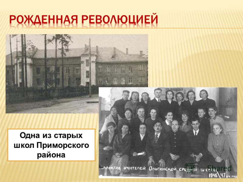 Одна из старых школ Приморского района