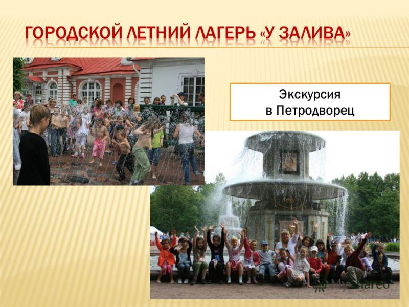 Экскурсия в Петродворец