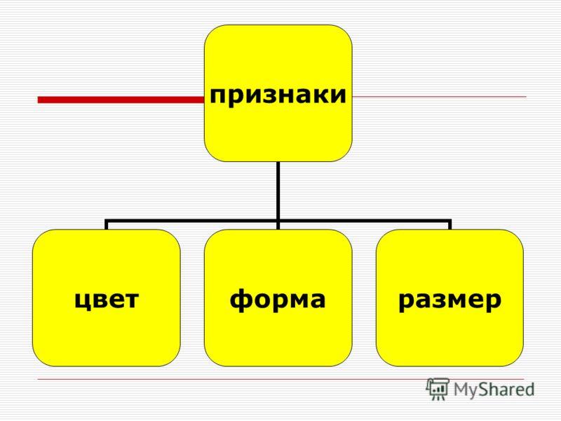 признаки цветформаразмер
