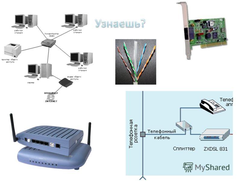 Какая связь между картинками на слайде?