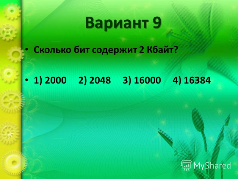 Вариант 9 Сколько бит содержит 2 Кбайт? 1) 2000 2) 2048 3) 16000 4) 16384