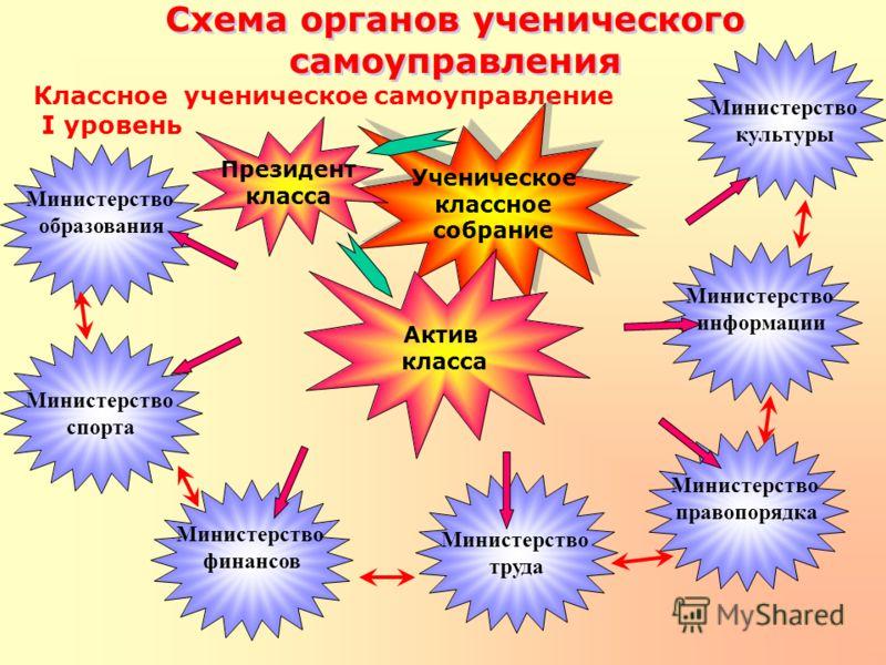 Схема органов ученического