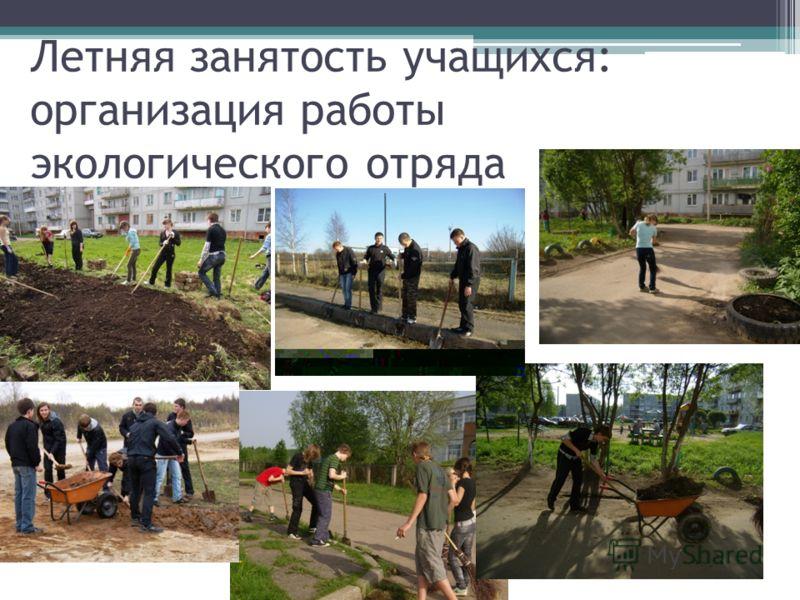 Летняя занятость учащихся: организация работы экологического отряда