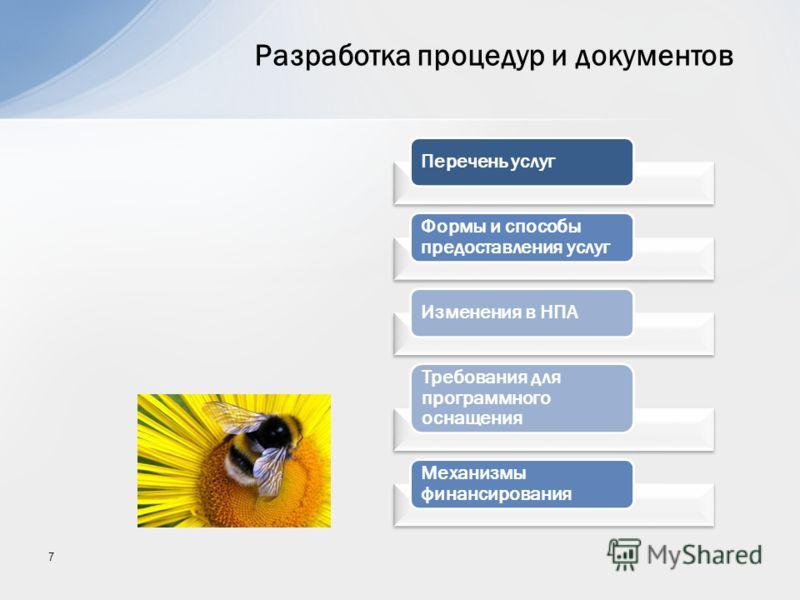 7 Перечень услуг Формы и способы предоставления услуг Изменения в НПА Требования для программного оснащения Механизмы финансирования Разработка процедур и документов