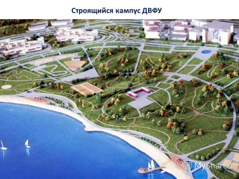 Строящийся кампус ДВФУ