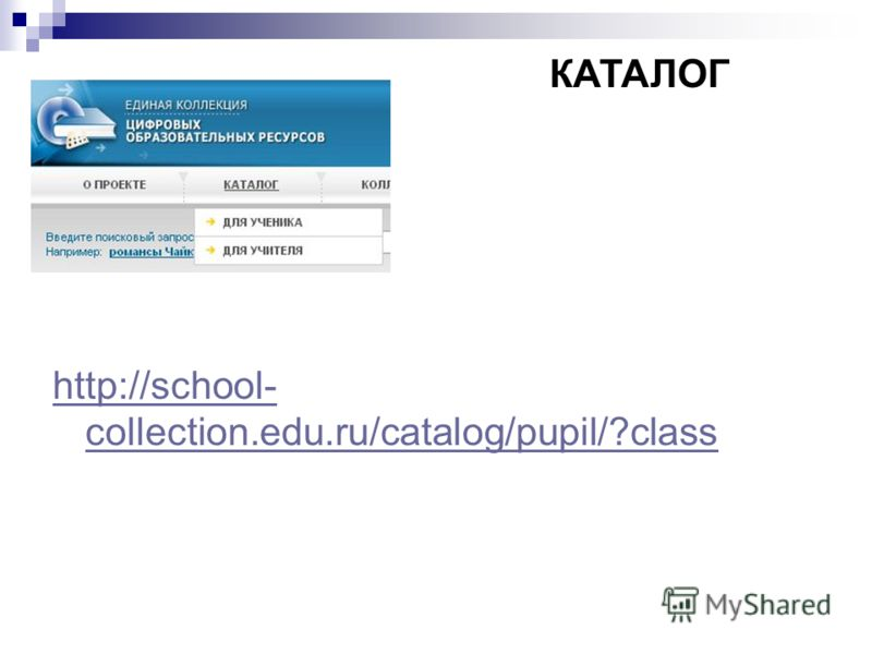 http://school- collection.edu.ru/catalog/pupil/?class КАТАЛОГ