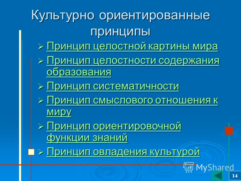 Личностно ориентированные принципы Принцип адаптивности Принцип адаптивности Принцип развития Принцип развития Принцип психологической комфортности Принцип психологической комфортности 13