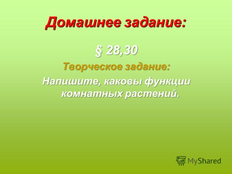 Домашнее задание: § 28,30 Творческое задание: Напишите, каковы функции комнатных растений.