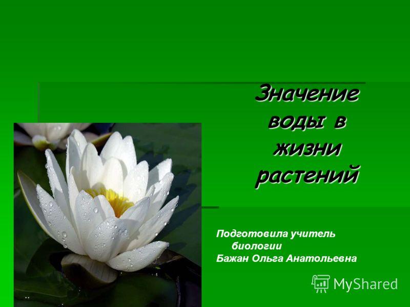 Значение воды в жизни растений Подготовила учитель биологии Бажан Ольга Анатольевна
