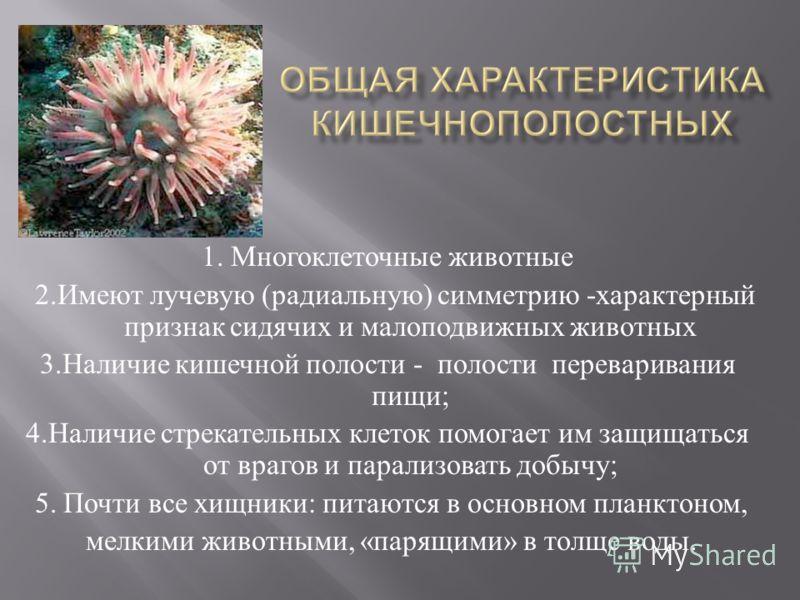 1. Многоклеточные животные 2. Имеют лучевую ( радиальную ) симметрию - характерный признак сидячих и малоподвижных животных 3. Наличие кишечной полости - полости переваривания пищи ; 4. Наличие стрекательных клеток помогает им защищаться от врагов и