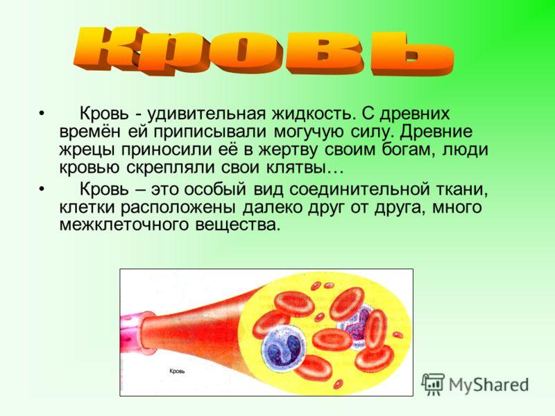 Кровь - удивительная жидкость. С древних времён ей приписывали могучую силу. Древние жрецы приносили её в жертву своим богам, люди кровью скрепляли свои клятвы… Кровь – это особый вид соединительной ткани, клетки расположены далеко друг от друга, мно