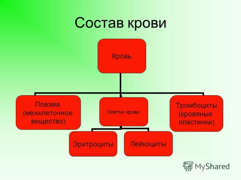 Состав крови Кровь Плазма (межклеточное вещество) Клетки кровиЭритроцитыЛейкоциты Тромбоциты (кровяные пластинки)