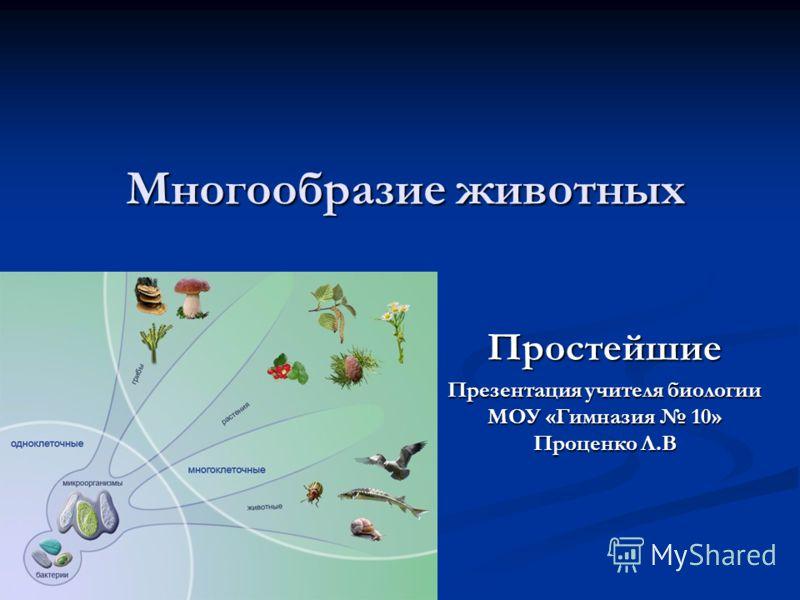 Многообразие животных Простейшие Презентация учителя биологии МОУ «Гимназия 10» Проценко Л.В
