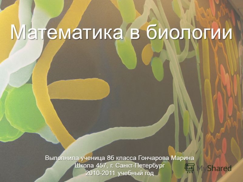 Математика в биологии Выполнила ученица 8б класса Гончарова Марина Школа 457, г. Санкт-Петербург 2010-2011 учебный год