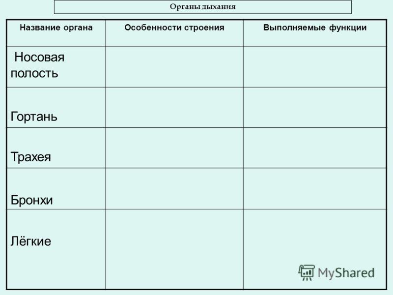Название органаОсобенности строенияВыполняемые функции Носовая полость Гортань Трахея Бронхи Лёгкие Органы дыхания