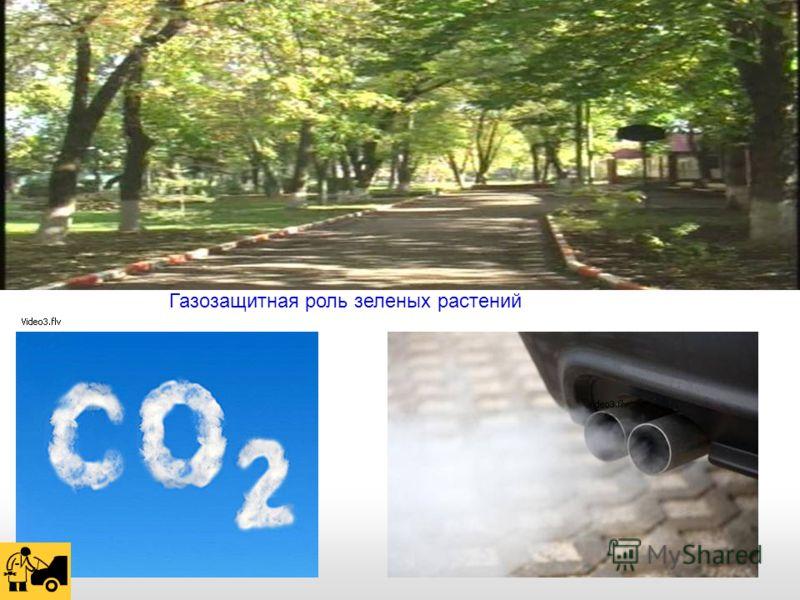 Газозащитная роль зеленых растений