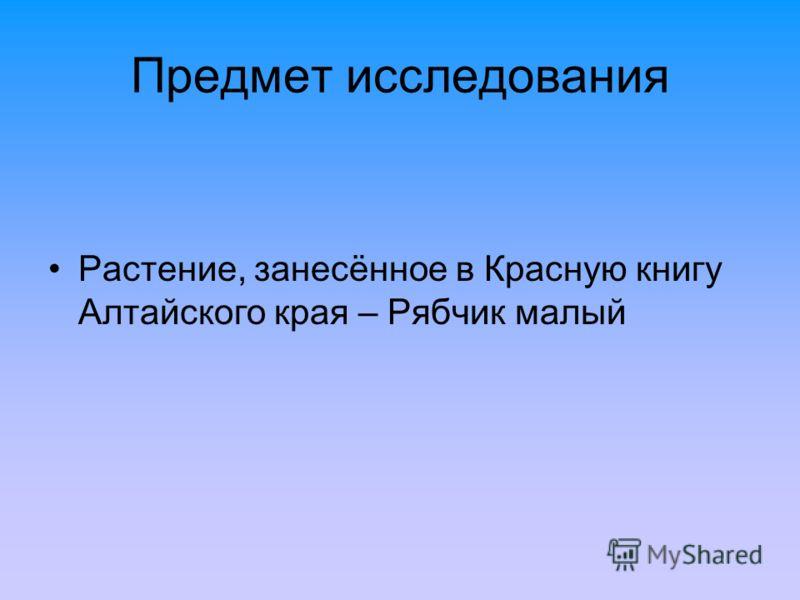 Предмет исследования Растение, занесённое в Красную книгу Алтайского края – Рябчик малый