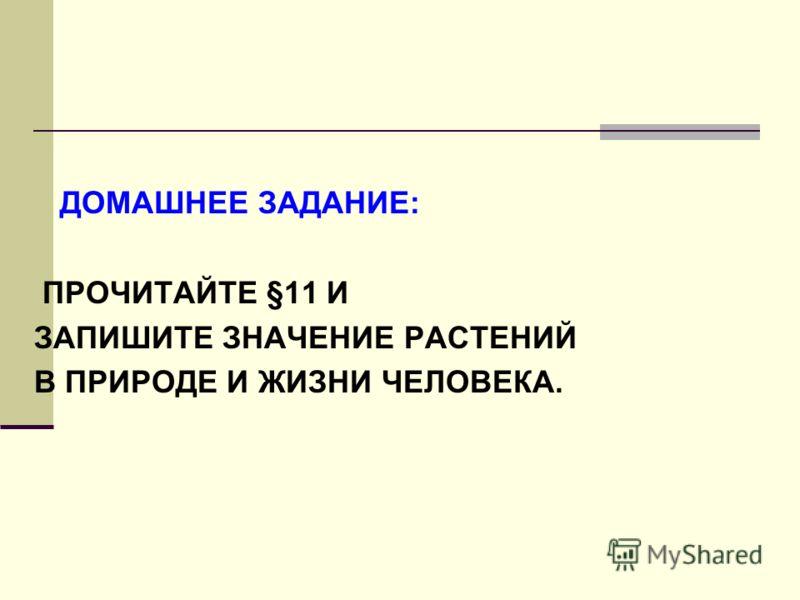 ДОМАШНЕЕ ЗАДАНИЕ: ПРОЧИТАЙТЕ §11 И ЗАПИШИТЕ ЗНАЧЕНИЕ РАСТЕНИЙ В ПРИРОДЕ И ЖИЗНИ ЧЕЛОВЕКА.