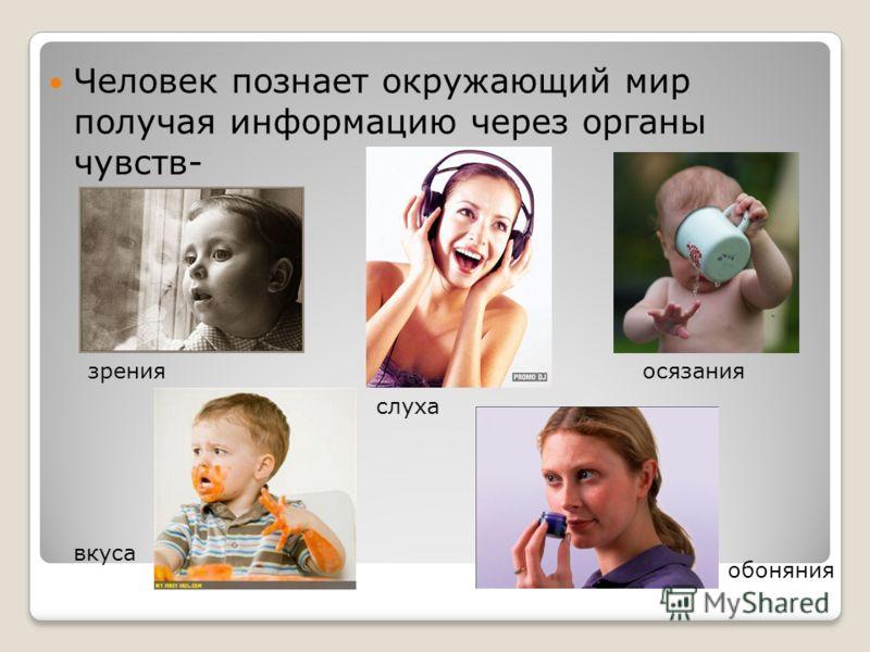 Человек познает окружающий мир получая информацию через органы чувств- зрения слуха осязания обоняния вкуса