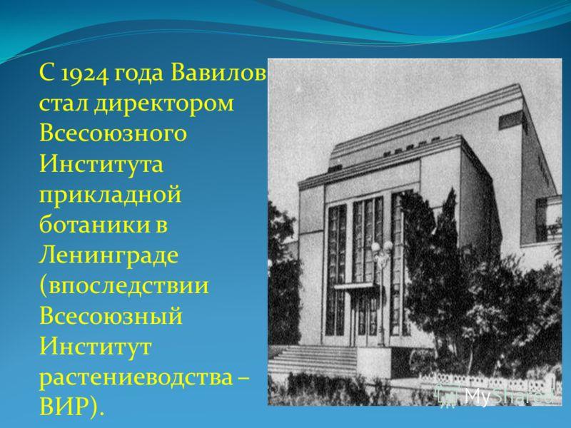 С 1924 года Вавилов стал директором Всесоюзного Института прикладной ботаники в Ленинграде (впоследствии Всесоюзный Институт растениеводства – ВИР).