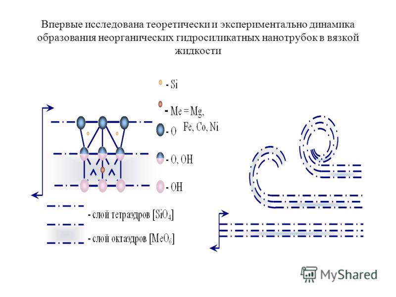 Впервые исследована теоретически и экспериментально динамика образования неорганических гидросиликатных нанотрубок в вязкой жидкости