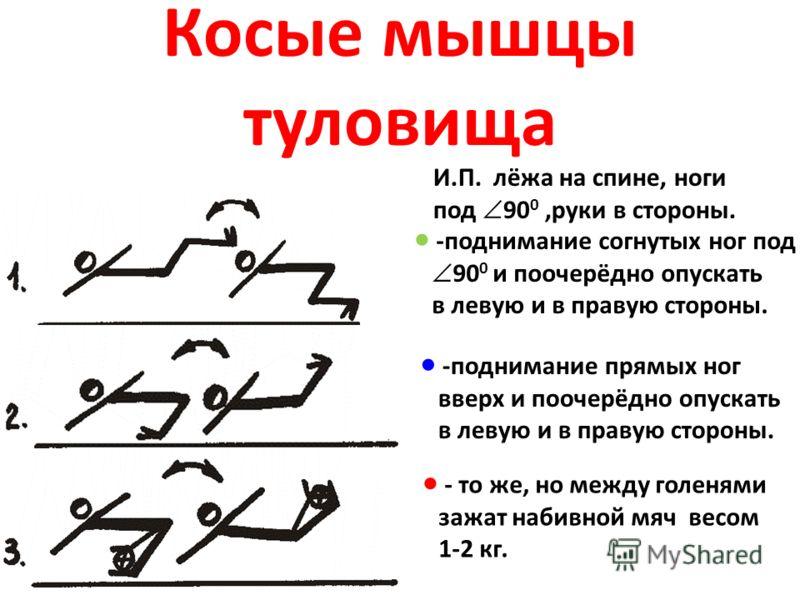 Косые мышцы туловища И.П. лёжа на спине, ноги под 90 0,руки в стороны. -поднимание согнутых ног под 90 0 и поочерёдно опускать в левую и в правую стороны. -поднимание прямых ног вверх и поочерёдно опускать в левую и в правую стороны. - то же, но межд