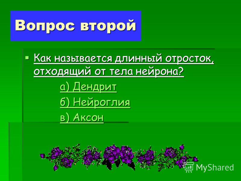 Вопрос второй Как называется длинный отросток, отходящий от тела нейрона? Как называется длинный отросток, отходящий от тела нейрона? а) Дендрит а) Дендрита) Дендрита) Дендрит б) Нейроглия б) Нейроглияб) Нейроглияб) Нейроглия в) Аксон в) Аксонв) Аксо