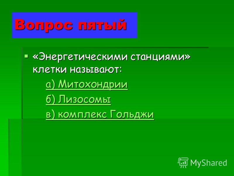 Вопрос пятый «Энергетическими станциями» клетки называют: «Энергетическими станциями» клетки называют: а) Митохондрии а) Митохондрииа) Митохондрииа) Митохондрии б) Лизосомы б) Лизосомыб) Лизосомыб) Лизосомы в) комплекс Гольджи в) комплекс Гольджив) к