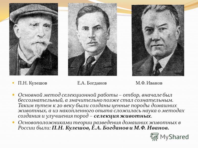П.Н. Кулешов Е.А. Богданов М.Ф. Иванов Основной метод селекционной работы – отбор, вначале был бессознательный, а значительно позже стал сознательным. Таким путем к 20 веку были созданы ценные породы домашних животных, а из накопленного опыта сложила