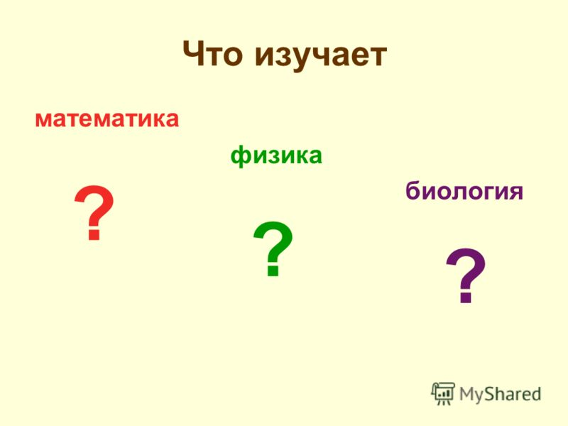 Что изучает математика физика биология ? ? ?