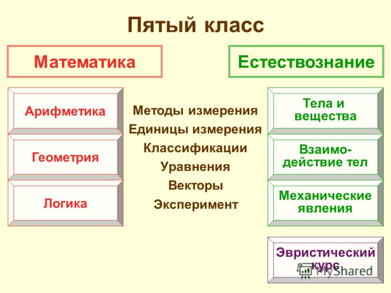 Пятый класс Методы измерения Единицы измерения Классификации Уравнения Векторы Эксперимент МатематикаЕстествознание Арифметика Геометрия Логика Тела и вещества Взаимо- действие тел Механические явления Эвристический курс