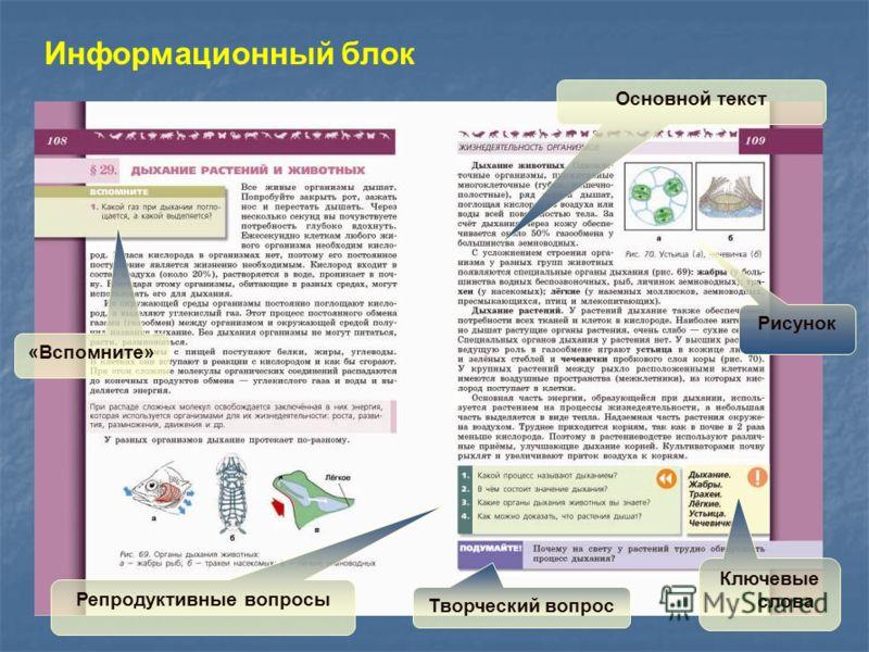 Информационный блок «Вспомните» Репродуктивные вопросы Основной текст Рисунок Ключевые слова Творческий вопрос